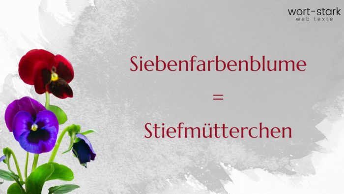 Verrückte Wörter Siebenfarbenblume Stiefmütterchen